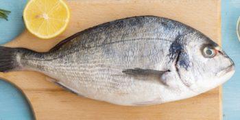 Il Pescatore - Distribuzione Prodotti Ittici